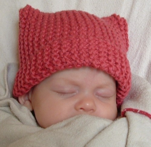 meow head hat